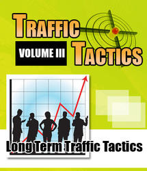 Search Engine Traffic Tactics